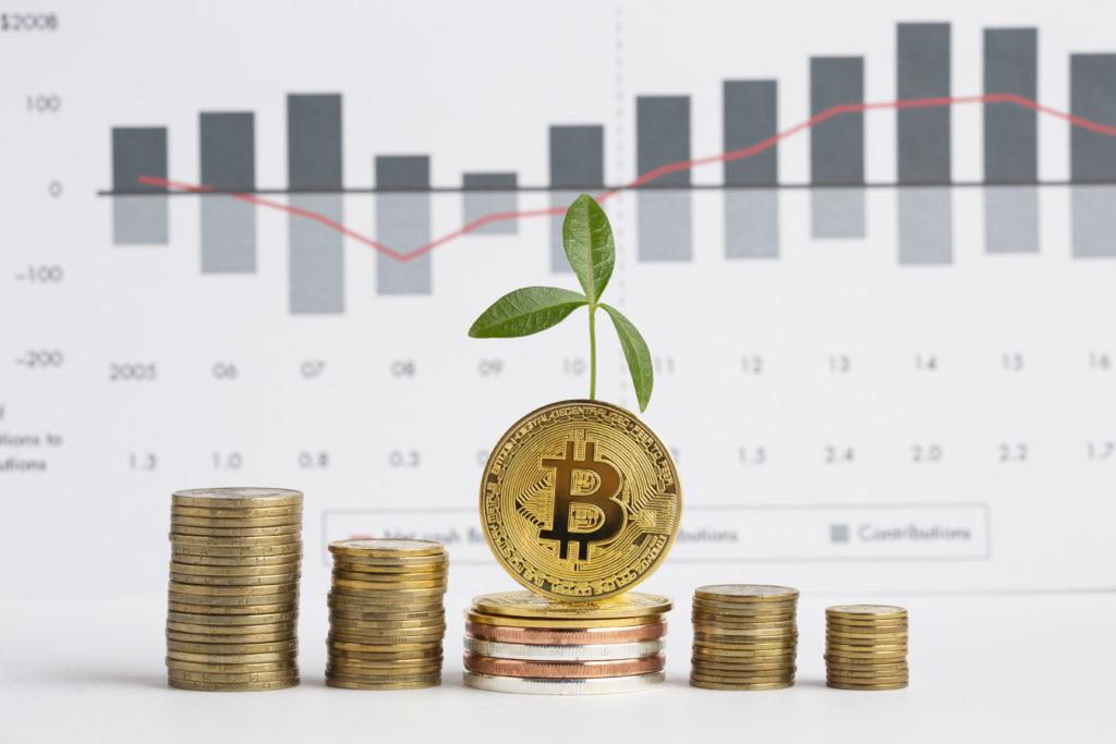 verilere gore bitcoin btc balinalari dusuk seviyelerden bitcoin aliyor
