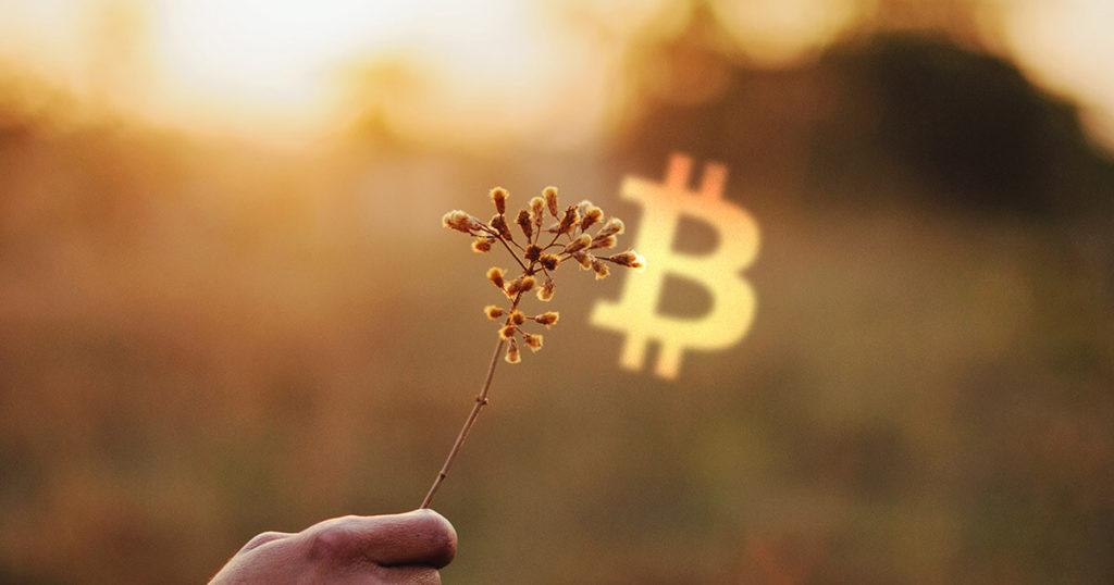 onemli bir kilometre tasi bitcoin btc 50 000 dolara ulasmayi basardi
