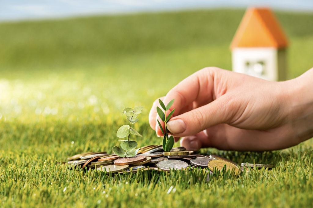 plant growing coins glass jar money green grass1