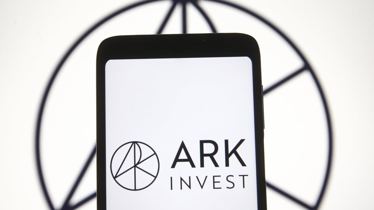 ark investment 246 milyon dolar degerinde coinbase hissesi aldi