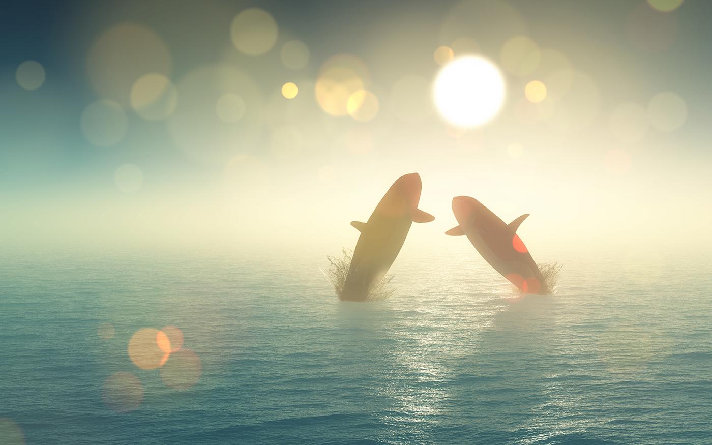 ethereum balina cuzdanlarinin sayisi zirve yapti