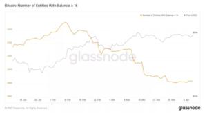 glassnode bitcoin madencileri birikim trendini surduruyor 2