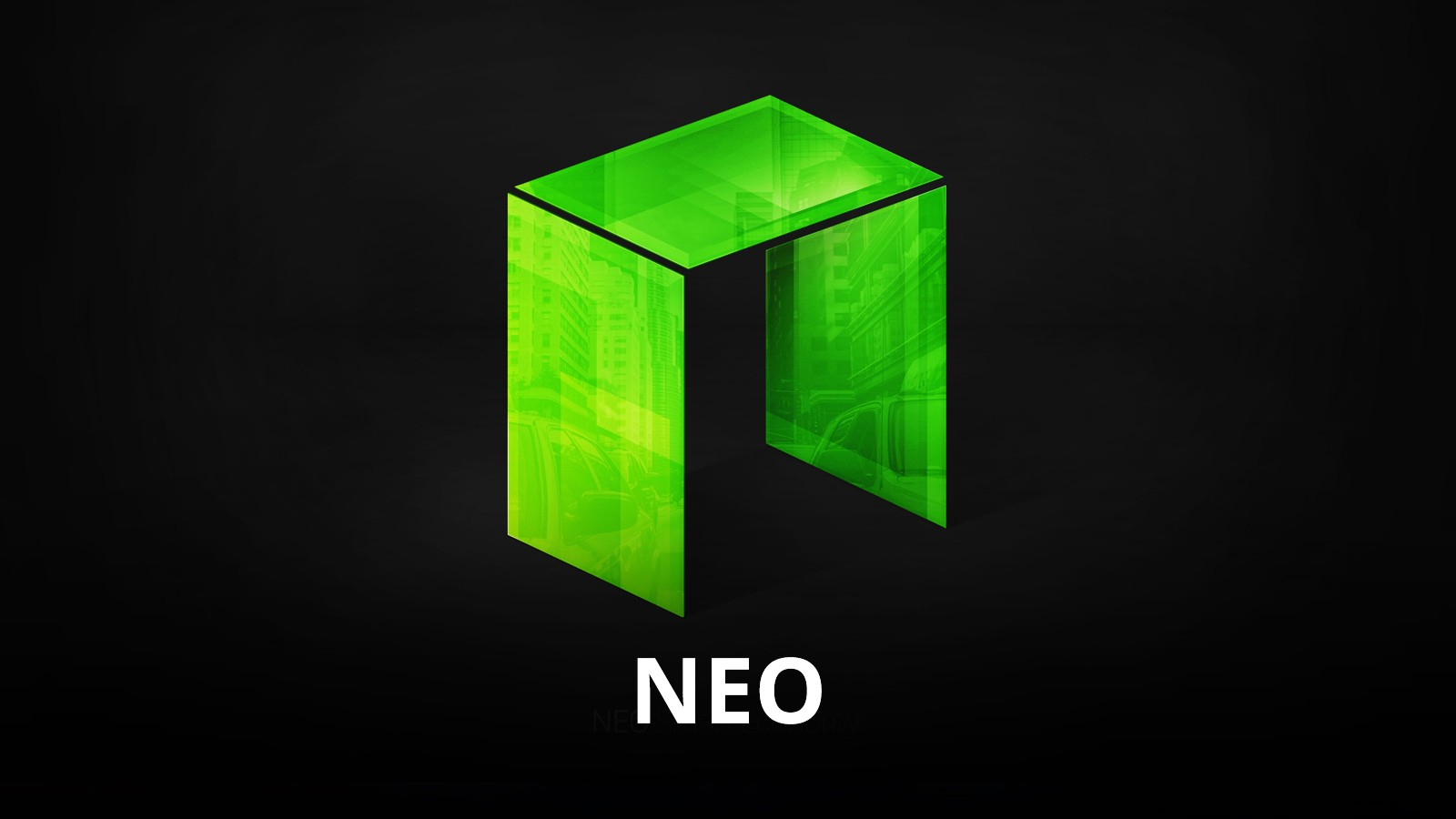 neo coin review