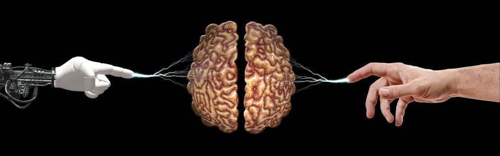 brain 5814961 1920