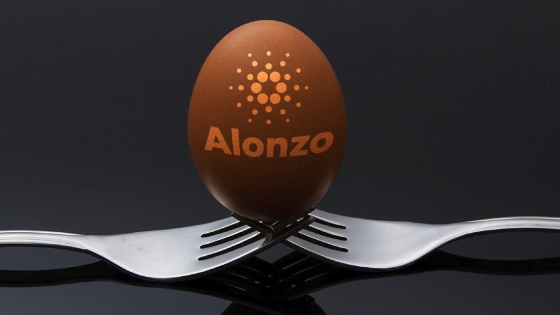alonzo hard fork cardano kurucusuna iddia kazandirdi