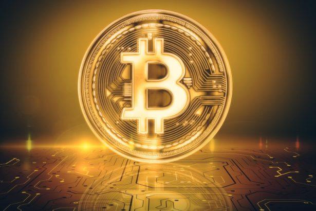 soros fundin ceosu dawn fitzpatrickten bitcoin aciklamasi